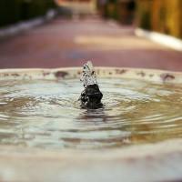 Prenez-vous soin de votre réservoir naturel d'énergies ?