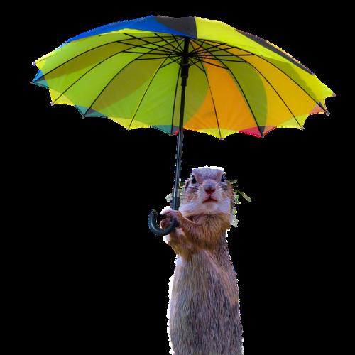 Danser sous la pluie par temps d'orage