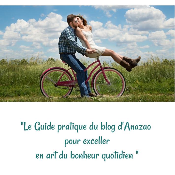 365 jours de Bonheur – le cahier pratique offert du blog d'Anazao
